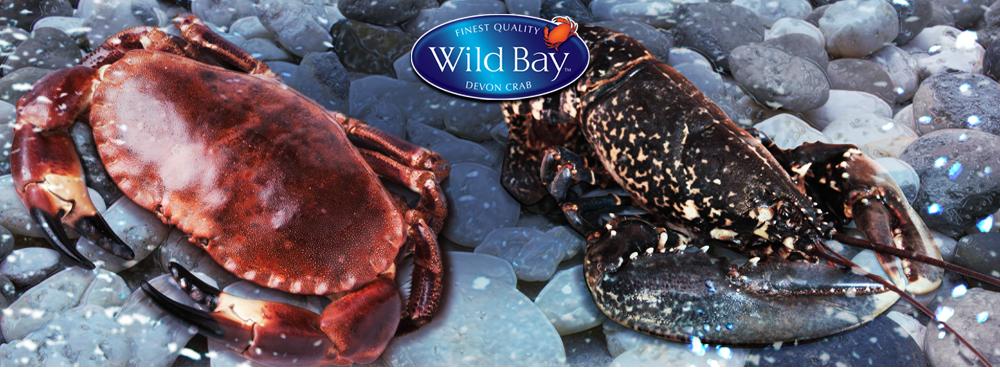 Blue Sea | Live Crab